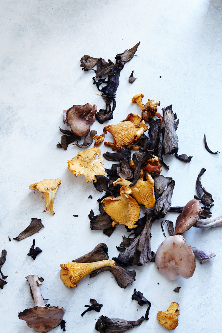 Chanterelles Black Trumpet Blue Foot